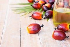 Cultivo comercial del aceite de palma Puesto que el aceite de palma contiene más sa Fotografía de archivo libre de regalías
