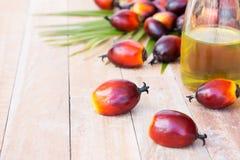 Cultivo comercial del aceite de palma Puesto que el aceite de palma contiene más sa Foto de archivo libre de regalías