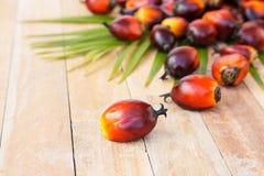 Cultivo comercial do óleo de palma Desde que o óleo de palma contém mais sa Fotos de Stock
