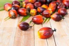 Cultivo comercial do óleo de palma Desde que o óleo de palma contém mais sa Foto de Stock Royalty Free