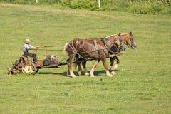Cultivo de Amish foto de stock