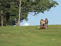 Cultivo de Amish imagem de stock