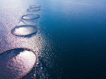 Cultivo de color salmón, granja de pescados en el mar foto de archivo