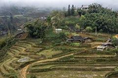 Cultivo de la aldea en las montañas de Vietnam. Foto de archivo libre de regalías