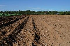 Cultivo de la tierra; prepárese para plantar imagen de archivo libre de regalías
