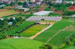 Cultivo de parcelas de tierra, montaña Vietnam Imagenes de archivo