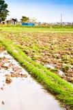 Cultivo de solo. imagens de stock