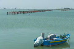 Cultivo dos mexilhões, lagoa de Scardovari, mar de adriático, Itália Fotos de Stock