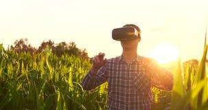 Cultivo elegante con IoT, concepto futurista de la agricultura: El granjero lleva los vidrios de VR o de AR mientras que supervis almacen de video