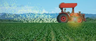 Cultivo esperto de Iot, agricultura na ind?stria 4 0 tecnologias com conceito da intelig?ncia artificial e da aprendizagem de m?q imagens de stock royalty free