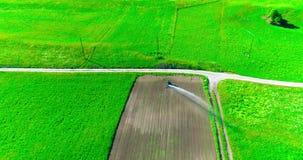 Cultivo industrial Imágenes de vídeo aéreas: Irrigación de un campo de la lechuga en Europa en verano Riego e irrigación metrajes