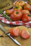 Cultivo orgánico de los tomates Fotografía de archivo libre de regalías