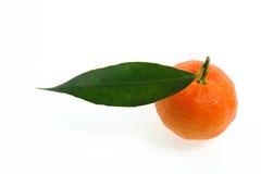 Cultivo orgânico das clementina frescas, em um fundo branco Imagens de Stock