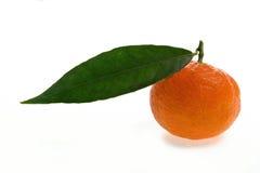 Cultivo orgânico das clementina frescas, em um fundo branco Foto de Stock