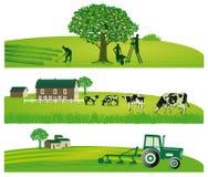 Cultivo y paisajes agrícolas stock de ilustración
