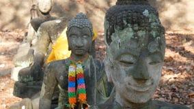 Culto della Tailandia, statua di Buddha, storia della Tailandia, tempio della statua di Buddha di Chiang Mai Province Parco stori stock footage