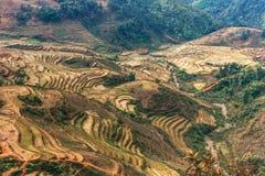 Cultura del arroz en las montañas de Sapa Imagenes de archivo