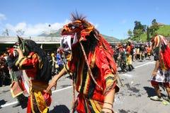 Cultural parade Royalty Free Stock Photos