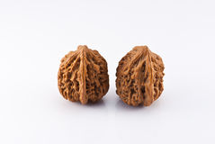Cultural walnuts Stock Images