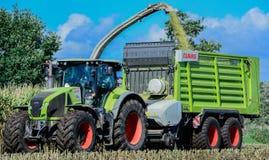 Culture de maïs, activité agricole pour la saison de récolte images libres de droits