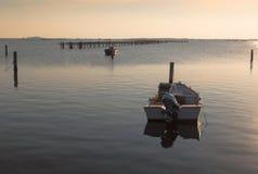 Culture de moule au scardovari& x27 ; lagune de s Photographie stock libre de droits