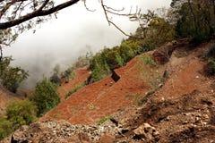 Culture de terrasse Image stock