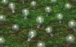 Culture des ampoules non allumées Image stock