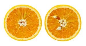 Culture orange d'isolement Images stock