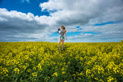 Culture Victoria rurale de Canola Images stock