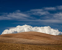 Cultured Field. Cultivated fields with big fluffy white cloud in Alentejo, in the south of Portugal stock photography
