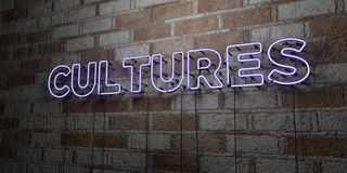 CULTURES - Glowing Neon Sign on stonework wall - 3D rendered royalty free stock illustration Royalty Free Stock Image