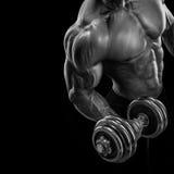 Culturista fuerte y del poder que hace ejercicios con pesa de gimnasia Imágenes de archivo libres de regalías