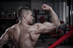 Culturista hermoso que presenta en gimnasio Cuerpo masculino muscular perfecto Imágenes de archivo libres de regalías