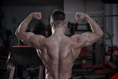 Culturista hermoso que presenta en gimnasio Cuerpo masculino muscular perfecto Fotografía de archivo libre de regalías