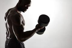 Culturista joven muscular que ejercita con pesas de gimnasia imágenes de archivo libres de regalías