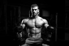Culturista maschio, modello di forma fisica Fotografia Stock Libera da Diritti