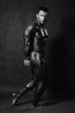 Culturista maschio muscolare che posa nello studio fotografia stock
