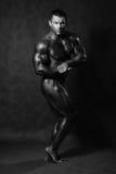Culturista maschio muscolare che posa nello studio fotografia stock libera da diritti