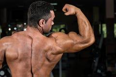 Culturista masculino que muestra su bíceps Foto de archivo libre de regalías