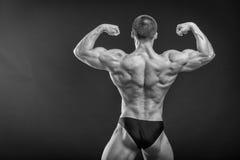 Culturista muscolare dell'uomo Fotografia Stock