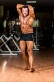 Culturista muscular que muestra su ABS abdominal delantero Foto de archivo
