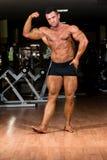 Culturista muscular que muestra su bíceps Imágenes de archivo libres de regalías