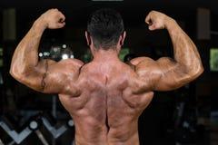 Culturista muscular que muestra su bíceps doble trasero Imagenes de archivo