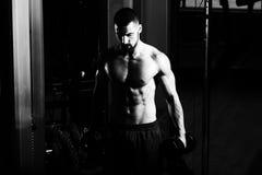Culturista que ejercita el bíceps con pesas de gimnasia Fotografía de archivo libre de regalías