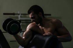 Culturista que ejercita el bíceps con pesas de gimnasia Fotografía de archivo