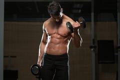 Culturista que ejercita el bíceps con pesas de gimnasia Foto de archivo libre de regalías