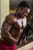 Culturista que hace el ejercicio pesado para el tríceps con el cable Fotografía de archivo