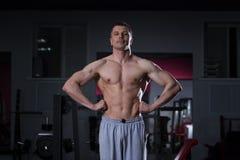 Culturista que presenta en gimnasio, cuerpo masculino muscular perfecto Fotografía de archivo libre de regalías