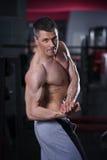Culturista que presenta en gimnasio, cuerpo masculino muscular perfecto Fotografía de archivo