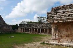 Cultuur Mexico Yucatan van Pyramide van Uxmal mayan ruïnes Stock Foto's